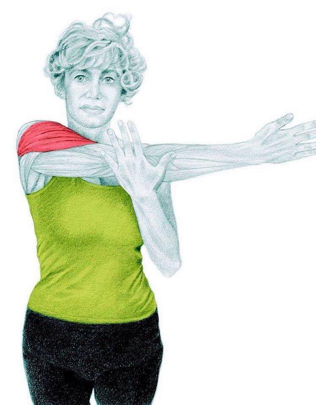 esercizi-stretching-training_01