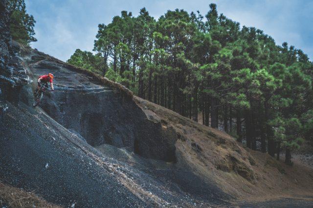 Il verde delle pinete che si mischia con il marrone e il nero del terreno di origine vulcanica