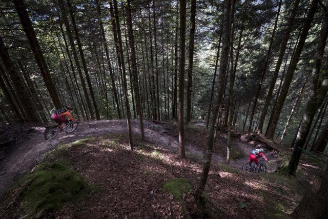 Flow Trail nei boschi sopra Molveno