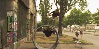 Állatkert-video-est-europe