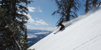 sci online sci vendita storfit