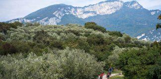 Garda Trentino eMTB Adventure