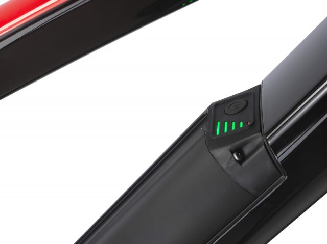 E-Pard LED Batteria