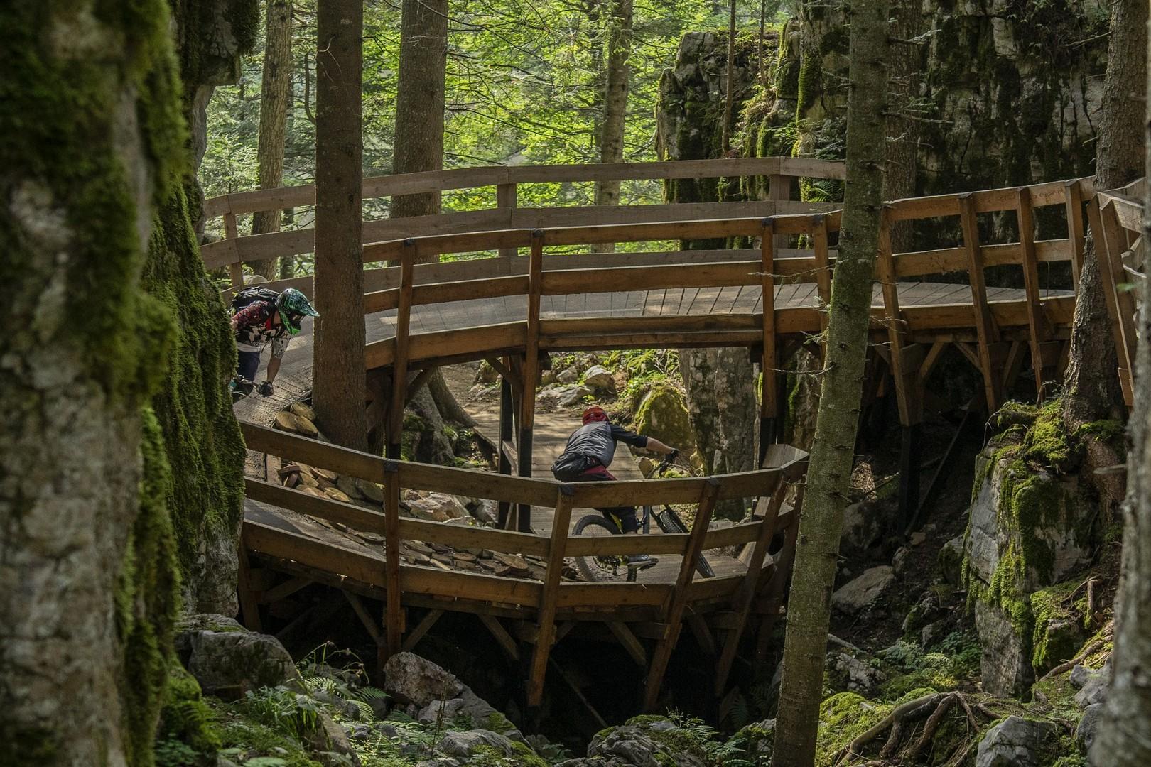 Willy Wonka Trail - foto: Sotto Bosco