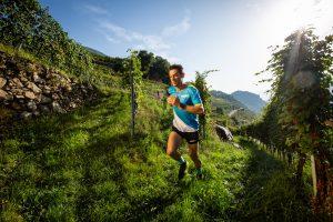 Marco De Gasperi in ricognizione sul percorso del Valtellina Wine Trail 2019. Senza di lui e ad un gruppo di suoi amici, la gara non sarebbe probabilmente mai nata!
