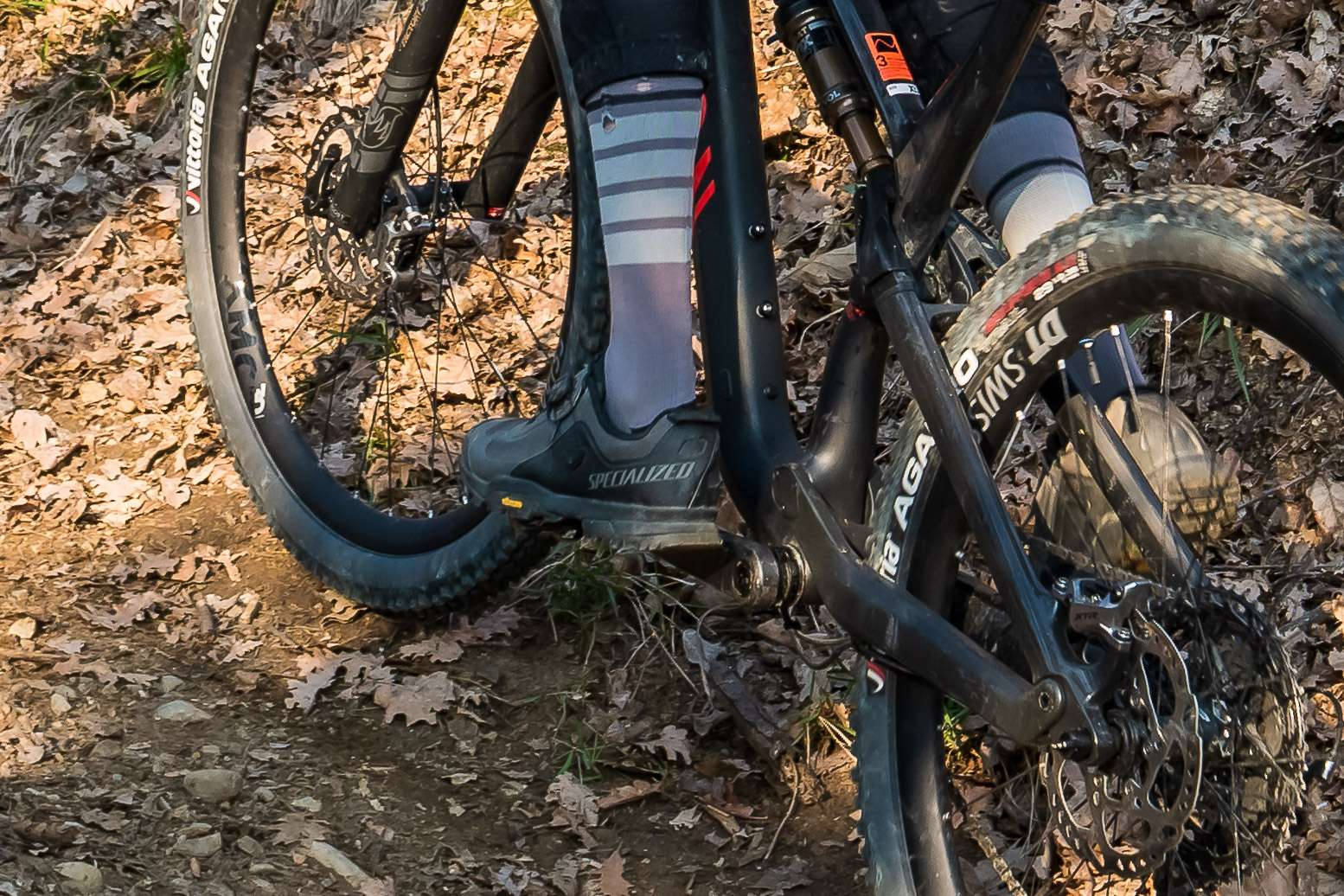 Specialized Rime 2.0 - action