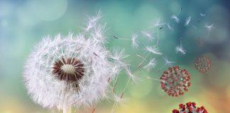 alergie e vovid-19