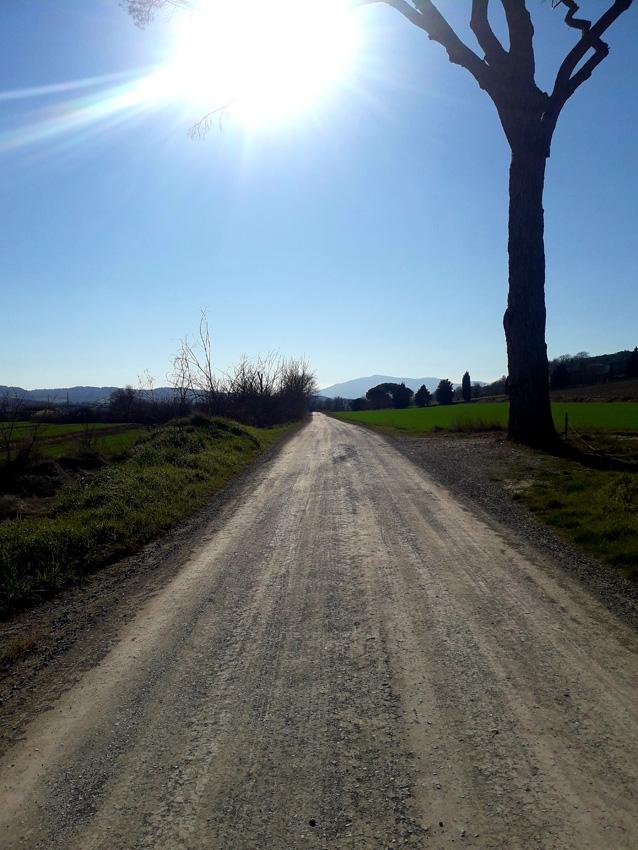 Una suggestiva immagine dei terreni offroad dell'Umbiratrail di MTB, perfetti per correre in libertà, ma prima bisogna scegliere la scarpa da running giusta per correre.