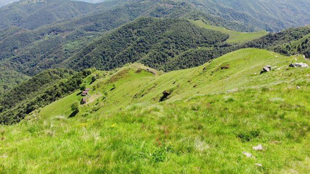 Camasca Trail - vista
