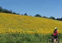 Voglio pedalare con te e stare al tuo fianco