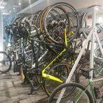 Emilia Romagna e la bicicletta
