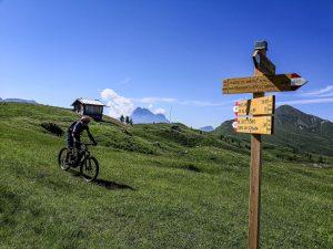 Dolomiti Bike Safari 0119