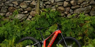 Trek Powerly FS - lifestyle