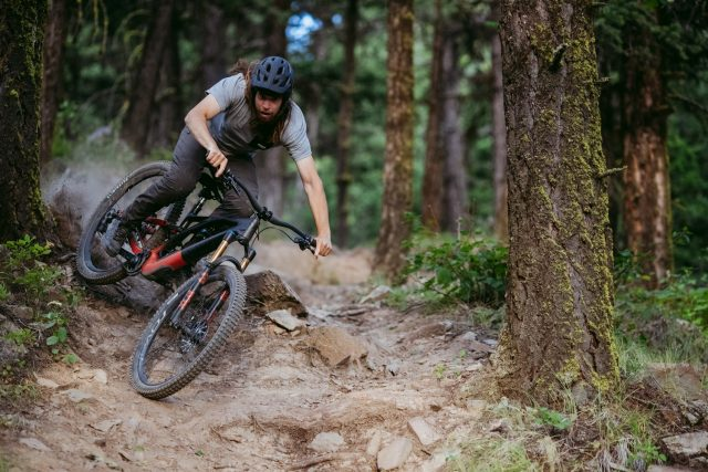 Specialized Stumpjumper Evo - action