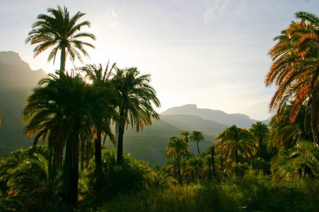 https://www.grancanaria.com/turismo/it/