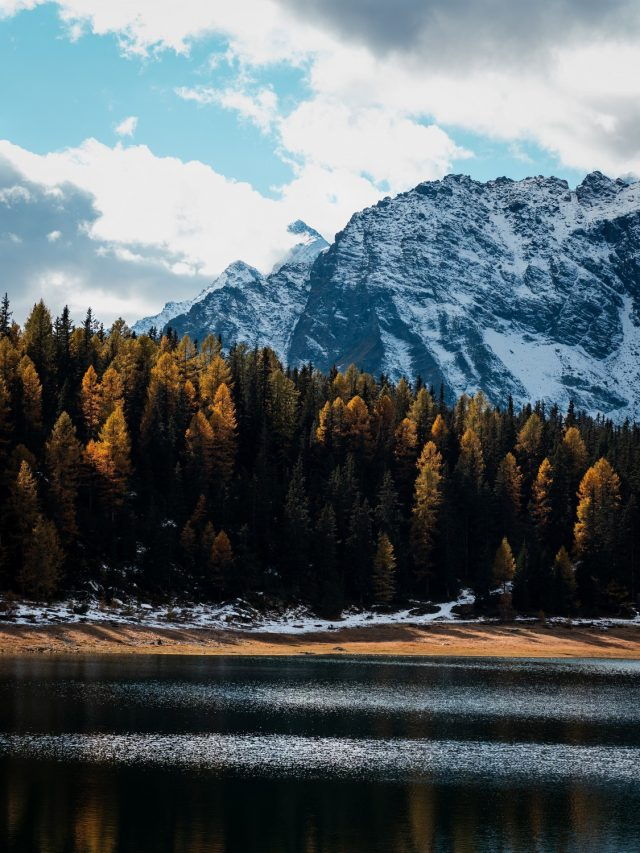 Fall without Falling photogallery - 04