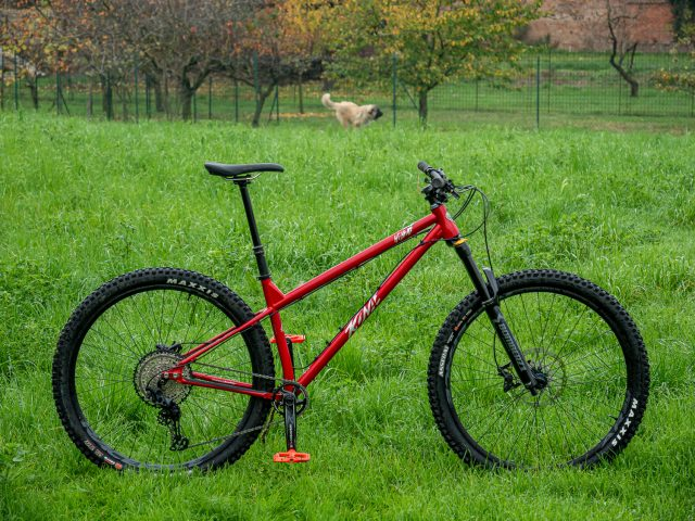 Kona Honzo ESD ITW - bike