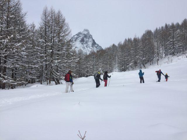 Uno scorcio del percorso Layet con una piccola alternativa in neve fresca non battuta, perfetto per Snow running e Snowshoes