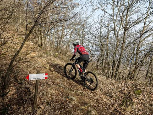 Specialized Epic Evo Expert - action 02