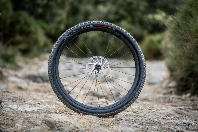 Specialized Roval Control Carbon - ant