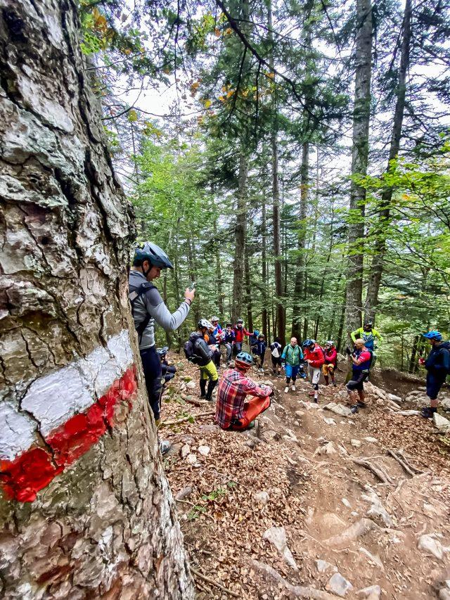 MTB Talks Dolomiti Paganella Bike - trail naturali 02