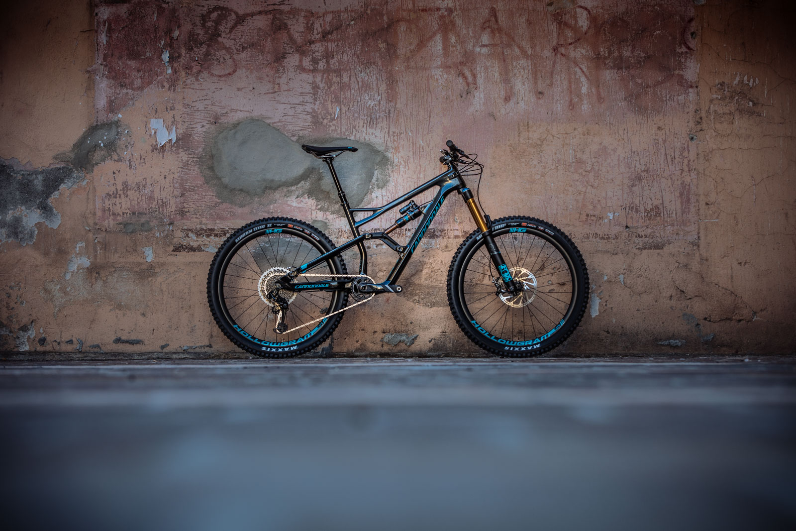 Cannondale Jekyll & Trigger 2017_06